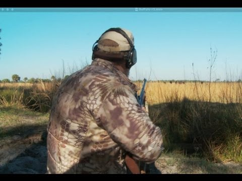 The Viking Chronicles: Florida Buffalo Hunt