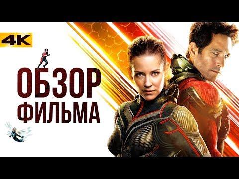 Мстители 3.5 - обзор фильма Человек-Муравей и Оса