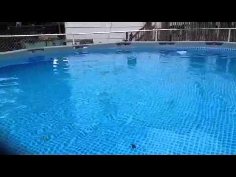 16x48 intex metal frame pool youtube for Frame pool obi