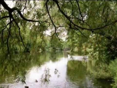 Коржуков Сергей - Осенний сад