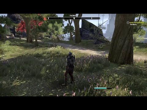 The Elder Scrolls Online Gameplay Walkthrough Part 41 - PC Ultra Settings Review Playthrough