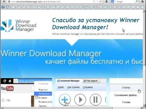 Менеджер загрузок Winner Download Manager