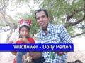 download lagu Wildflower - Dolly Parton's Style (Karaoke) gratis