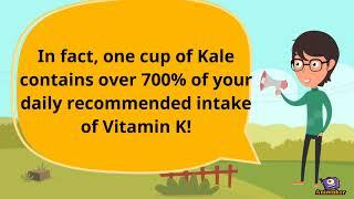 Vitamin K Presentation