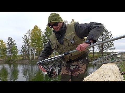 Огромная форель рвет снасти на тренировке. Рыбалка на РК Азарт осень 2017