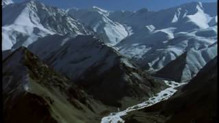 SNOW LEOPARDS Wildlife Animals National Geographic Discovery Nature