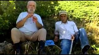 Vadi - Sivas Suşehri Koyulhisar Kaval Kültürü - Uzun Havalar - Doğu Karadeniz Düdüğü