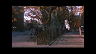 Download video You've Got Mail   Dreams
