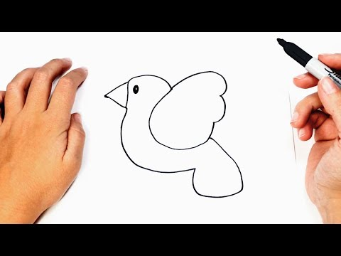 How to draw a Bird Easily Step by Step | Easy drawings