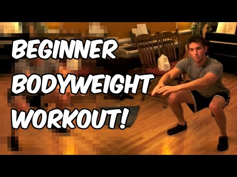 Beginner Body Weight Circuit Workout