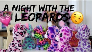 Beanie Boo Studios - A Night With The Leopards (Leopard Family Ep2)