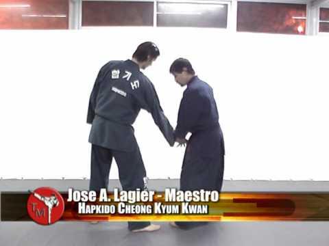 Bloque tecnico Hapkido - Lances