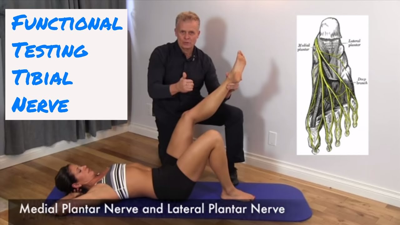 Functional Testing The Tibial Nerve Youtube