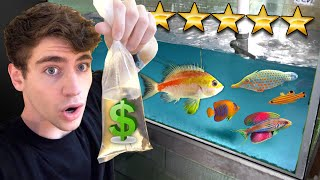 Shopping for the MOST EXPENSIVE RARE FISH!! ... (SALTWATER)