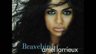 Watch Amel Larrieux Bravebird video