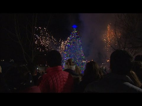Boston and Halifax bound by 98-year Christmas tradition