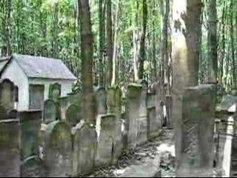 Cmentarz żydowski W Warszawie Jewish Cemetery In Warsaw