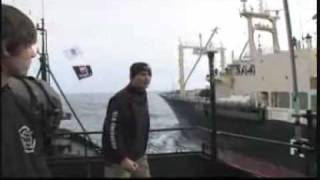 Whale Wars ~The Trailer