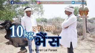 दस किलो दुध वाली भैंस_10kg Milk of Buffalo_Comedy by Murari Lal Pareek