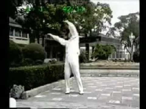 Qigong Shibashi 2a Parte (Dr. Lin Hou Sheng)
