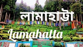 LAMAHATTA/a fairy hamlet near Darjeeling