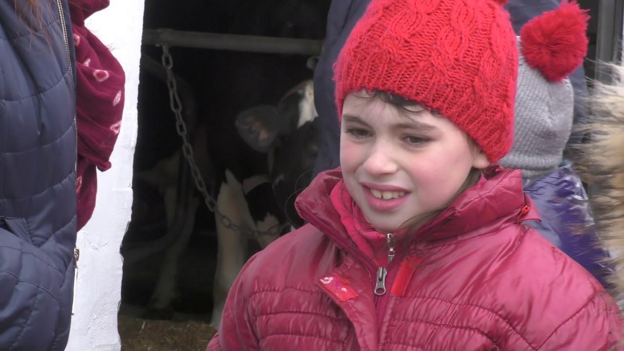 """Особливі діти побували на фермі """"Даноші"""" у Студінці"""