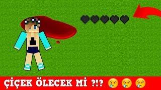 ZENGİN VS FAKİR #180 - Çiçek Ölecek mi ? (Minecraft)