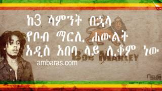 Tadias Addis  Bob Marley statue to be erected in Addis Ababa Ethiopia after 3 weeks