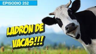Ladron de Vacas! l whatdafaqshow.com
