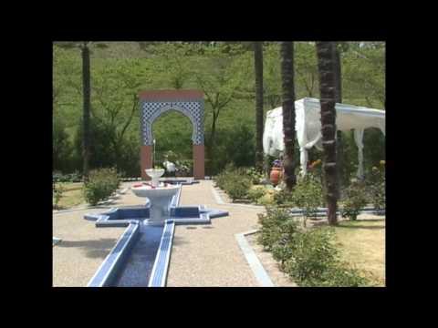 癒しの園 花フェスタ記念公園のパワースポットとは・・・・