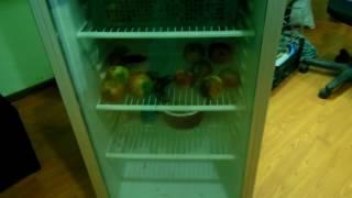 Витрина холодильник ремонт своими руками 89