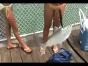 Flounder Fishing Fort Walton Florida Fishing Pier Video