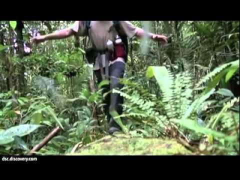 Пішки вздовж Амазонки за 860 днів