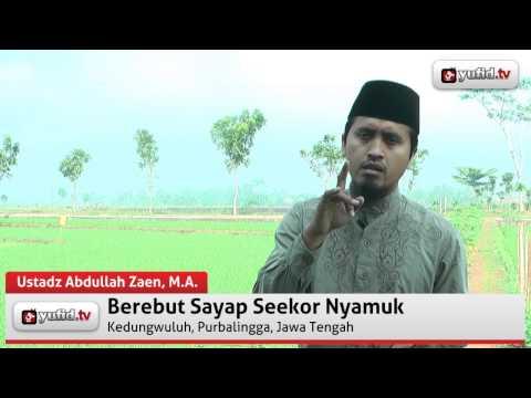 Kajian Tausiyah Islam Hakekat Dunia Seperti Sayap Seekor Nyamuk - Ustadz Abdullah Zaen
