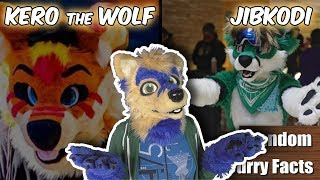 CELEBRITIES as Furries | The CUTEST Furry ANIMATOR | Random Furry Facts #6