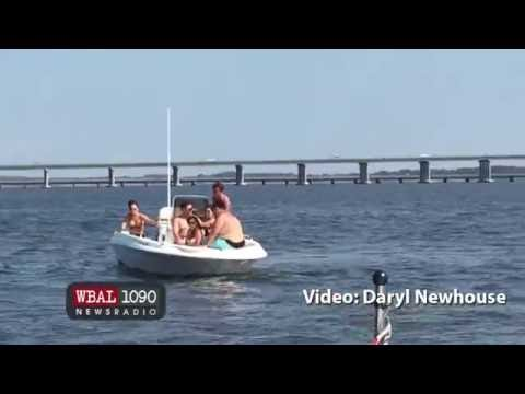 RAW VIDEO: Boaters Brawl On Choptank River In Maryland