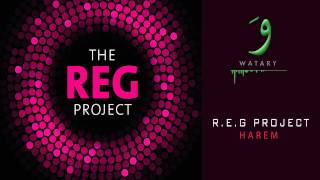 REG Project - 02 Harem