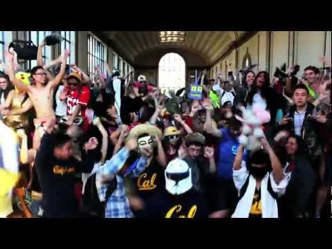 UC BERKELEY HARLEM SHAKE (OFFICIAL CAL EDITION)
