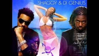 Watch Shaggy Falling In Love video