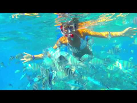 Snorkeling Red Sea, Egyrt, Hurghada 2013  Gopro 1080 Hd                    ,               , 2013