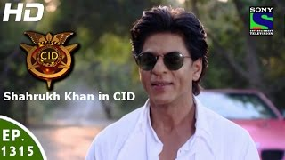 Download CID - सी आई डी - Shahrukh Khan in Dilwale - Episode 1315 - 19th December, 2015 l 3Gp Mp4