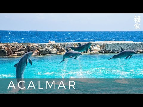 Kenio Fuke -  Segredos Da Vida Cd Piano E Natureza Vol 3 Www.kfmusic.br video
