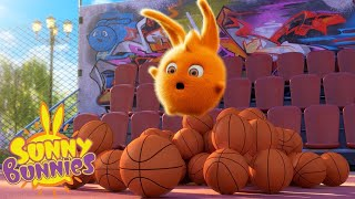 Cartoons for Children | SUNNY BUNNIES - SPORTS DAY | Funny Cartoons For Children