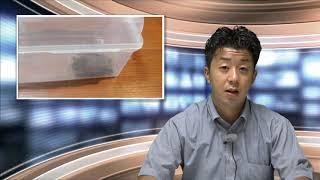 コウモリ捕獲大作戦!【FDNニュース】