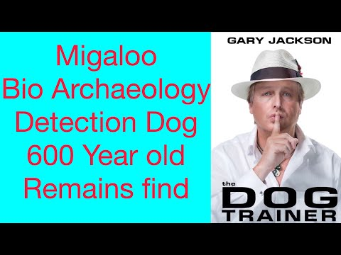 World record burial find Migaloo