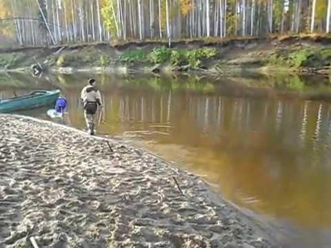 туринск рыбалка видео