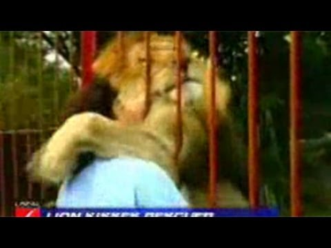 Lion Attacks Kills Woman To Death At The Cat Haven In Fresno County, California 2013 video