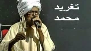 بادى _ انت حكمة ولا آية _ تغريد محمد