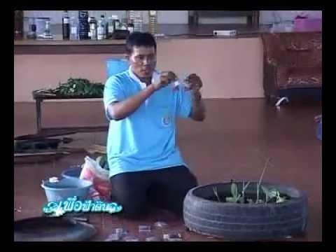 ปลูกผักในล้อยาง. flv