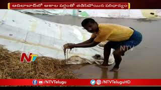 Adilabad : అధికారుల నిర్లక్ష్యం వాళ్ళ అకాల వర్షంతో తడిసిపోయిన వరిధాన్యం |  | NTV